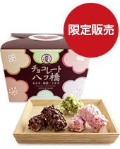 チョコレート八ッ橋 バレンタインMIX